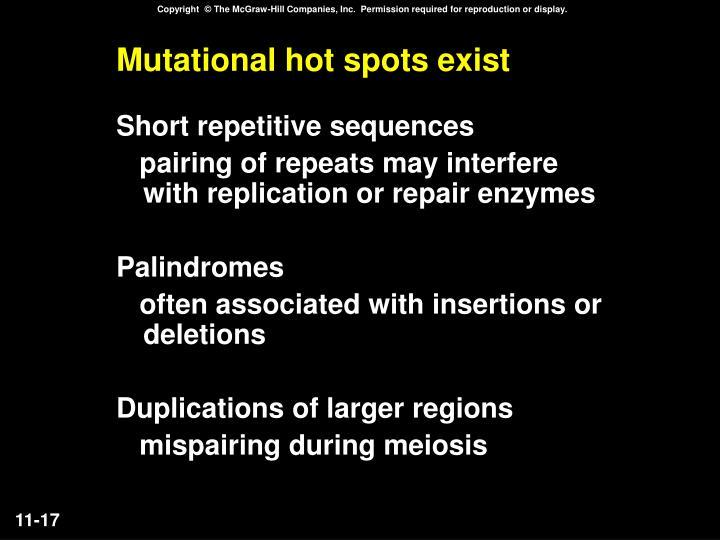 Mutational hot spots exist