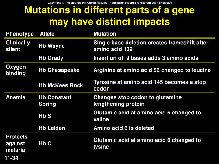 Mutations in different parts of a gene may have distinct impacts