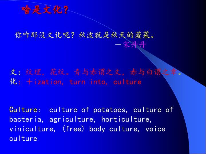 啥是文化?