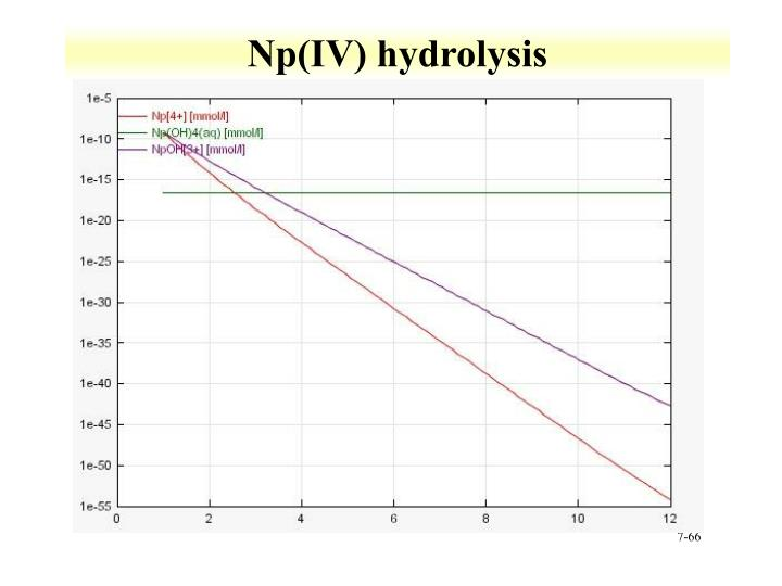 Np(IV) hydrolysis