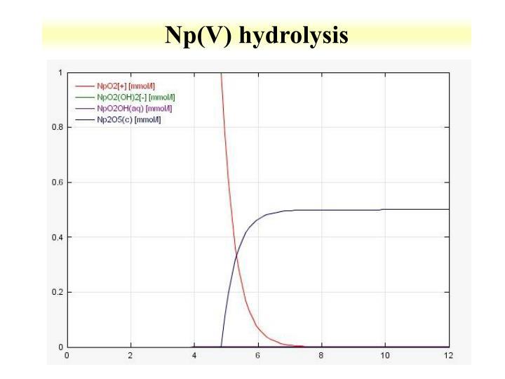 Np(V) hydrolysis