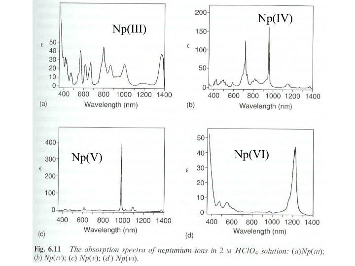 Np(IV)