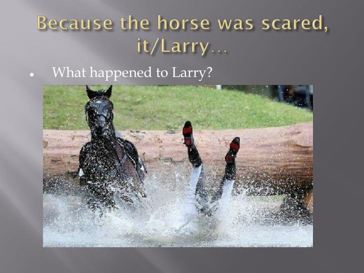 Because the horse was scared, it/Larry…