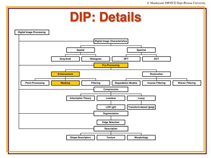 DIP: Details