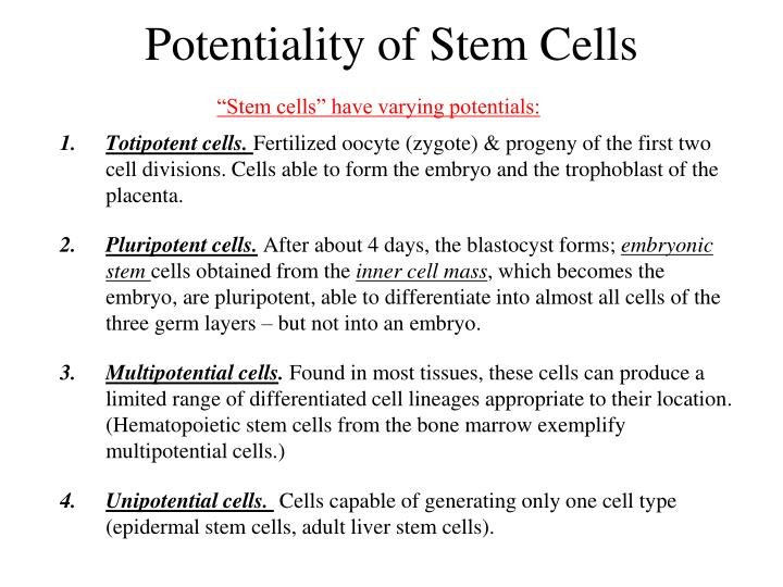 Potentiality of Stem Cells