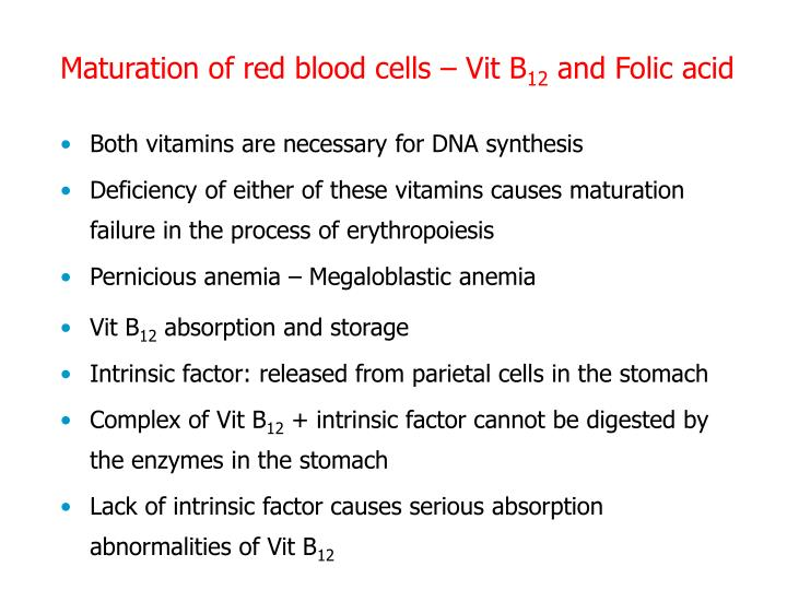 Maturation of red blood cells – Vit B