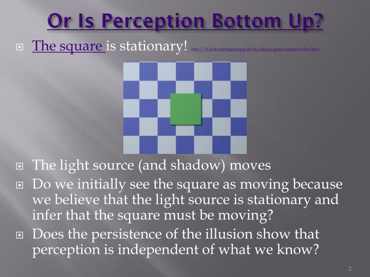 Or Is Perception Bottom Up?