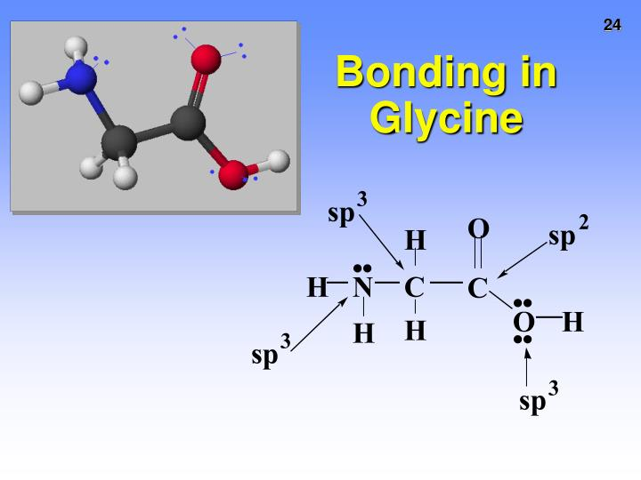 Bonding in Glycine