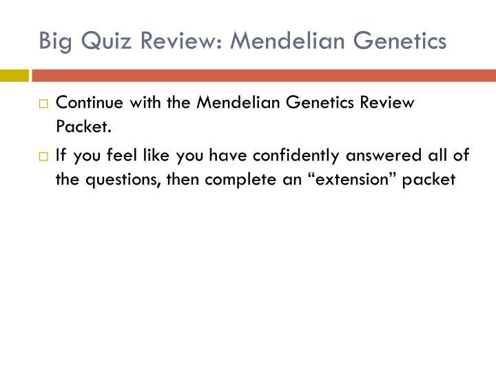 Big Quiz Review: