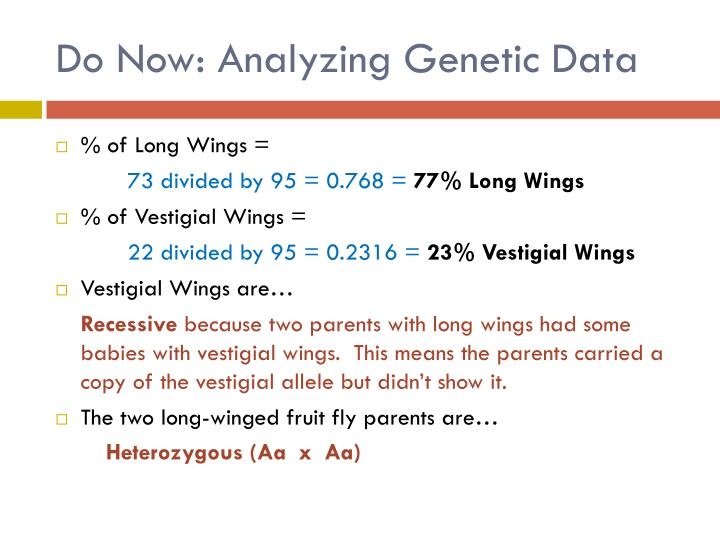 Do Now: Analyzing Genetic Data