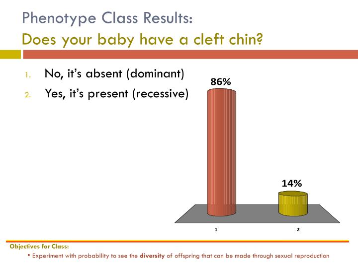 Phenotype Class Results: