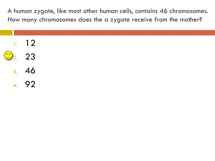A human zygote, like most other human cells, contains 46 chromosomes.  How many chromosomes does the a zygote receive from the mother?