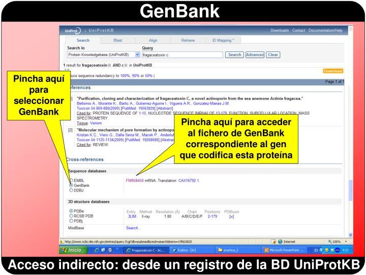 Pincha aquí para seleccionar GenBank