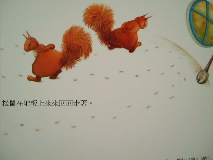 松鼠在地板上來來回回走著。