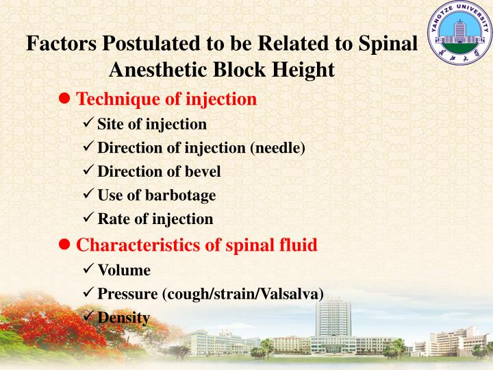 Factors Postulated to be Related to Spinal Anesthetic Block Height