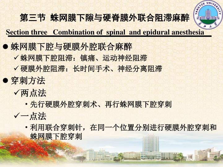 第三节 蛛网膜下隙与硬脊膜外联合阻滞麻醉