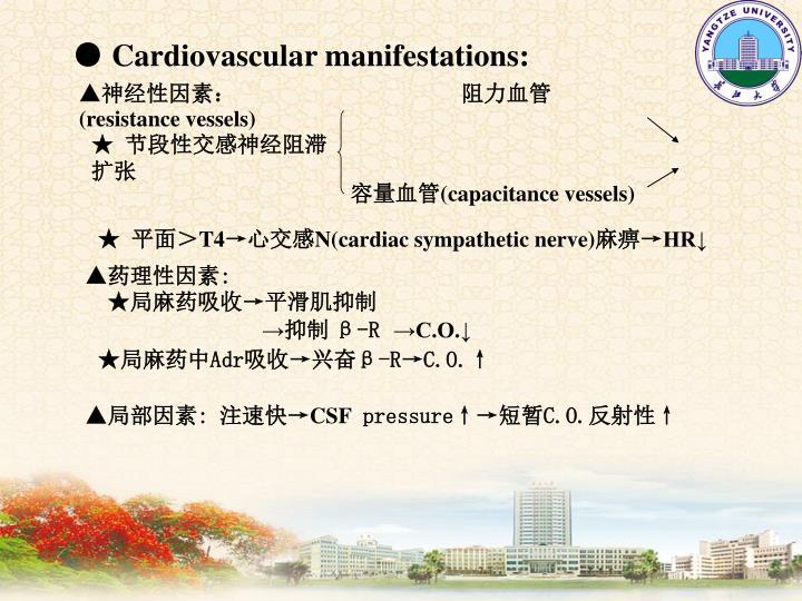● Cardiovascular manifestations: