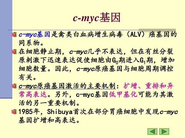 c-myc