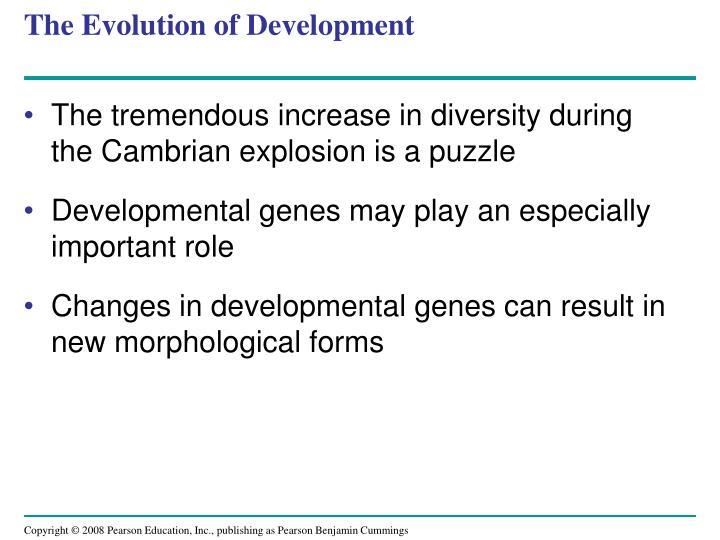 The Evolution of Development