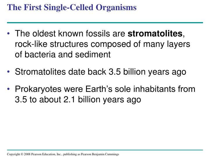 The First Single-Celled Organisms