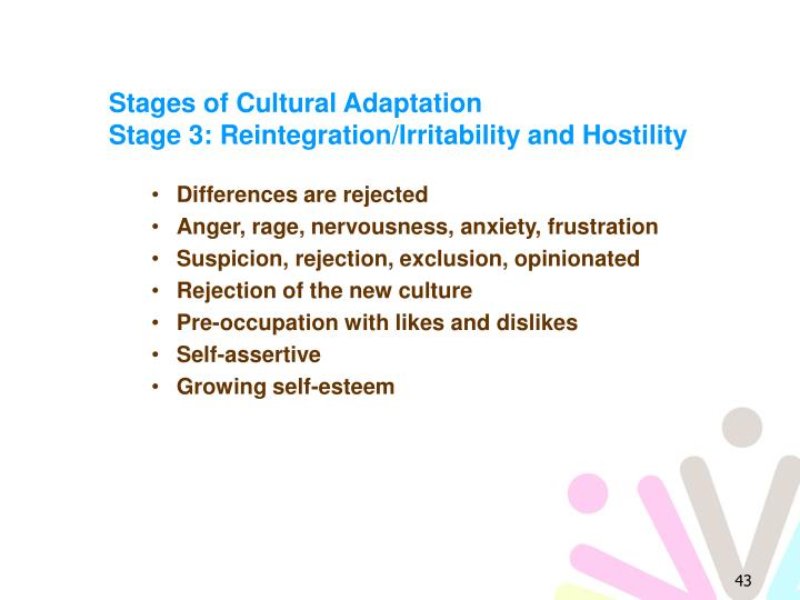 Stages of Cultural Adaptation