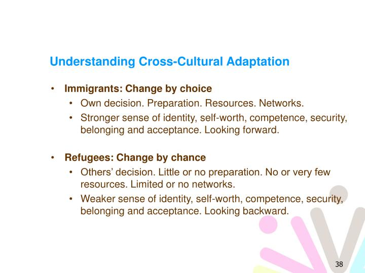 Understanding Cross-Cultural Adaptation