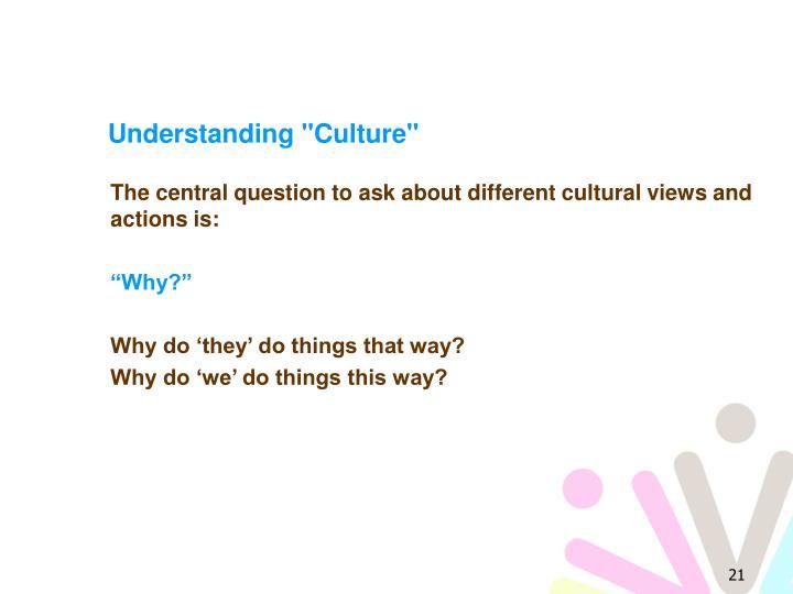 """Understanding """"Culture"""""""