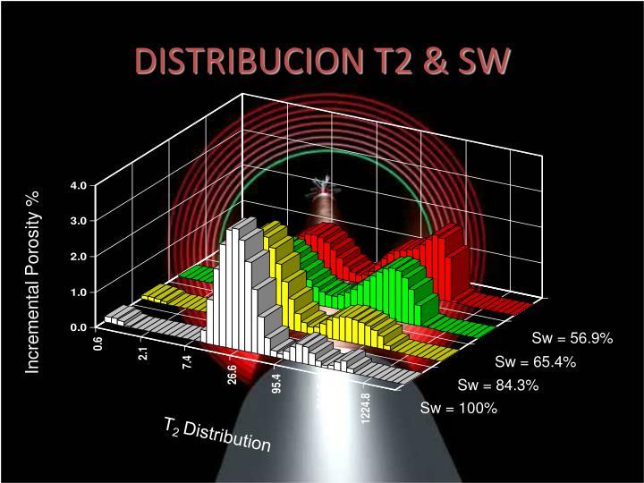 DISTRIBUCION T2 & SW
