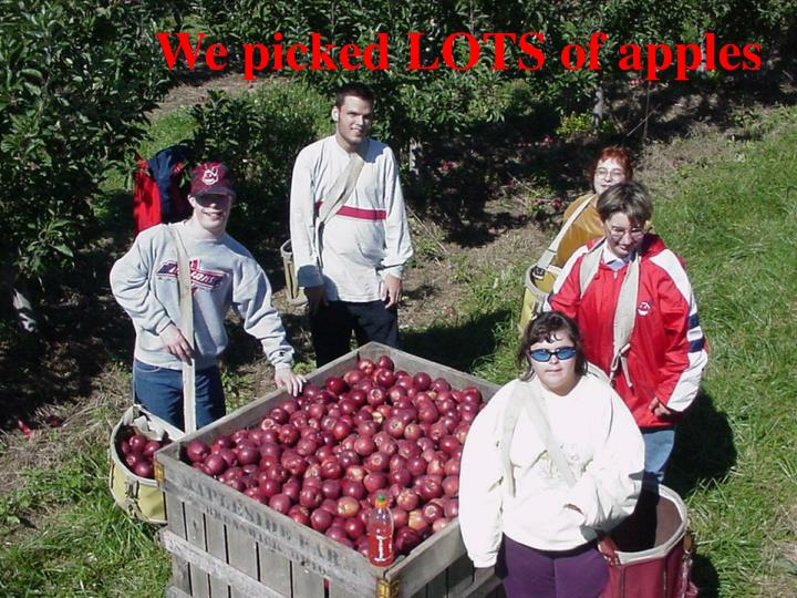 We picked LOTS of apples