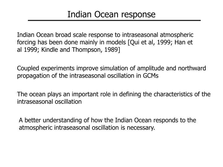 Indian Ocean response