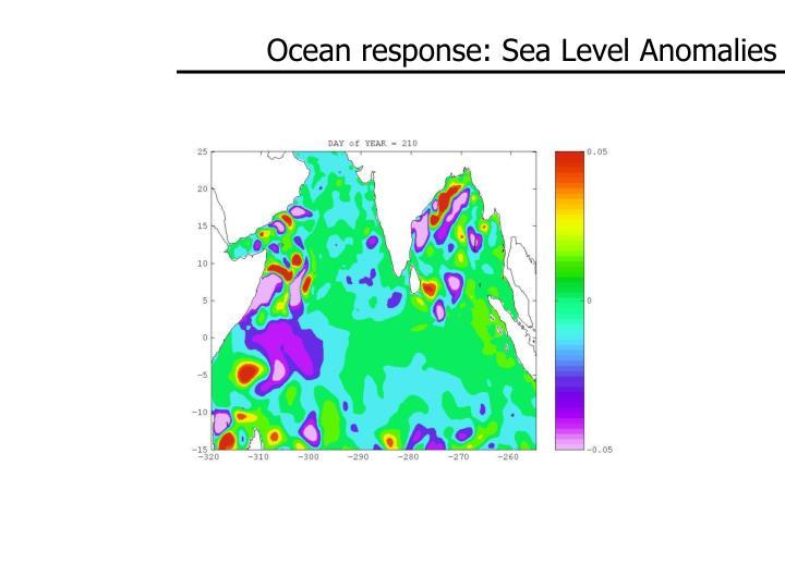 Ocean response: Sea Level Anomalies