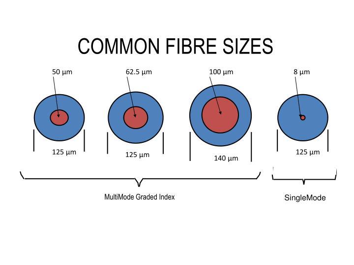 50 µm