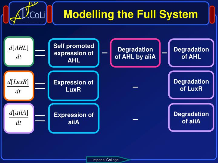 Modelling the Full System