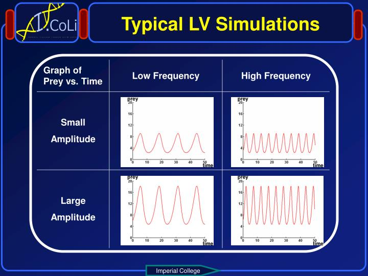 Typical LV Simulations