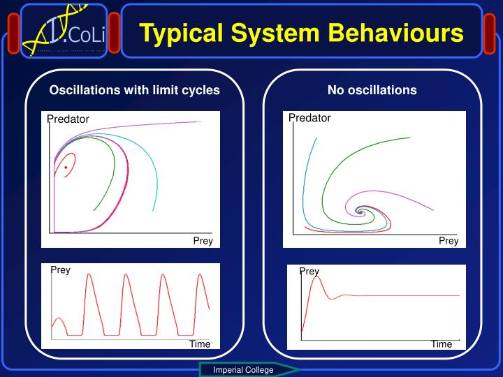 Typical System Behaviours