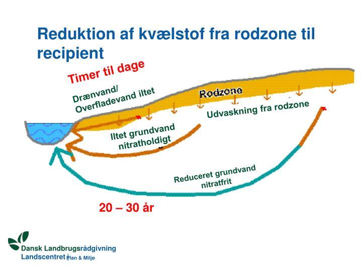 Reduktion af kvælstof fra rodzone til recipient