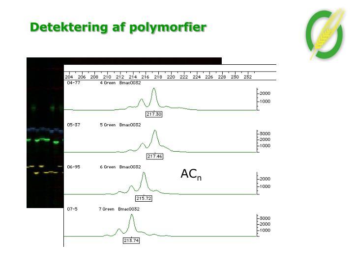 Detektering af polymorfier