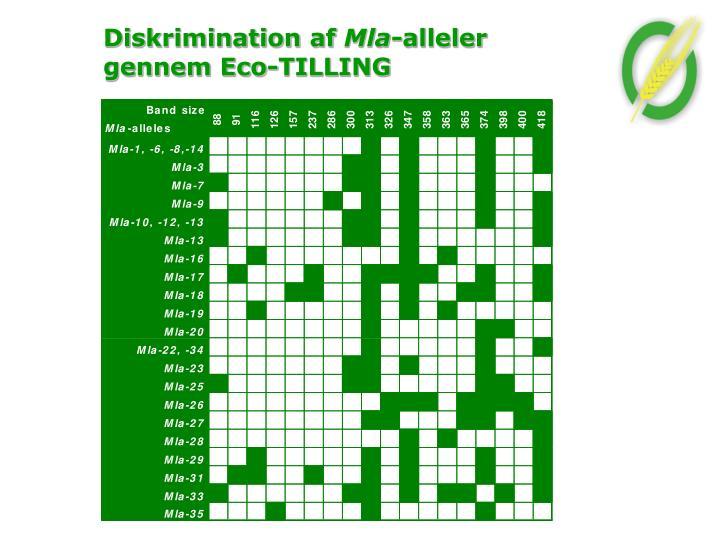 Diskrimination af