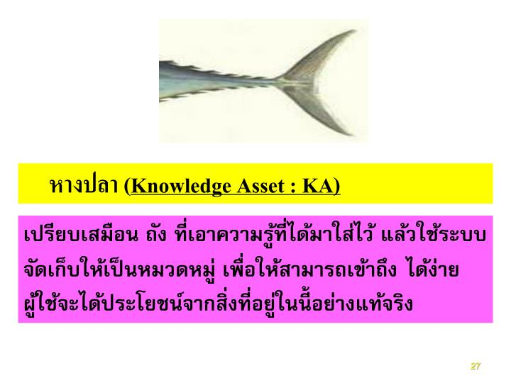 หางปลา