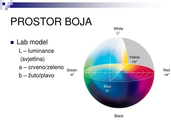Lab model