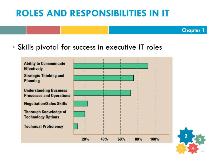ROLES AND RESPONSIBILITIES IN IT