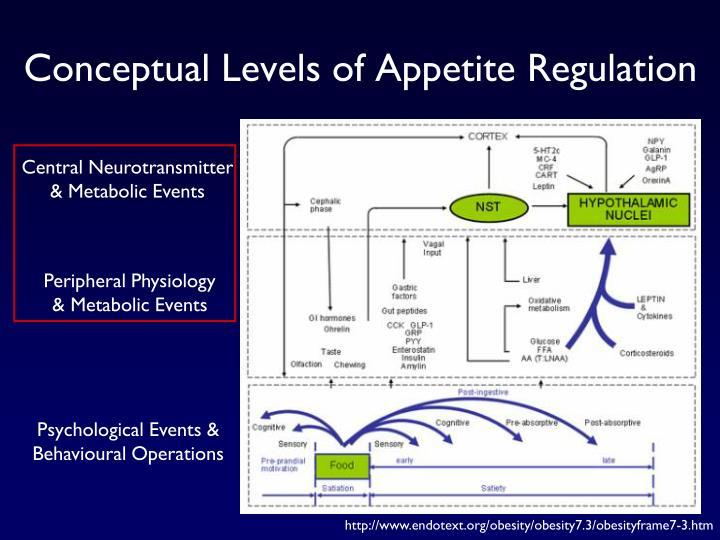 Conceptual Levels of Appetite Regulation