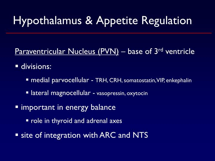 Hypothalamus & Appetite Regulation