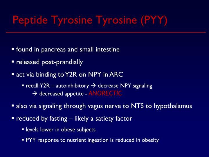 Peptide Tyrosine Tyrosine (PYY)