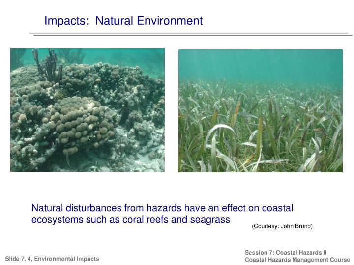 Impacts:  Natural Environment