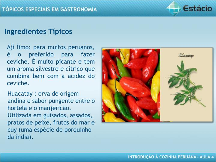 Ingredientes Típicos