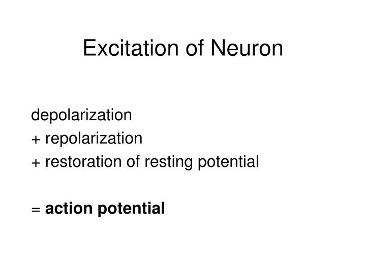 Excitation of Neuron