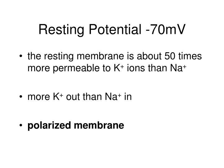 Resting Potential -70mV