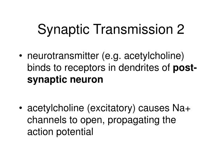 Synaptic Transmission 2