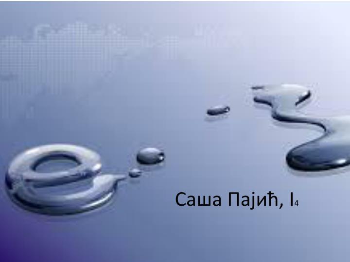 Саша Пајић, I